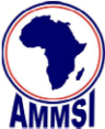 African Mathematics Millennium Science Initiative (AMMSI)